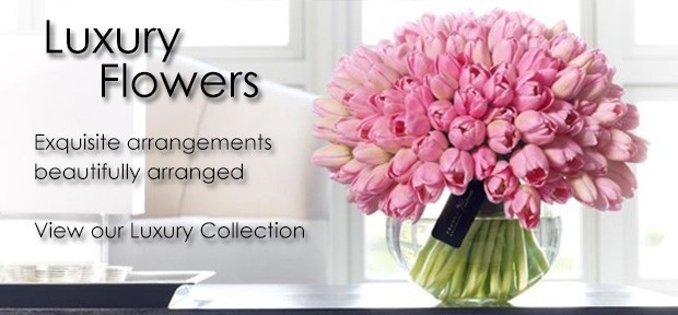 Luxury Flowers Aberdeen