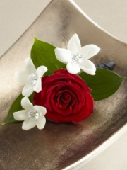 Love and Purity Boutonniere
