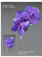 Purple Vanda Orchid Buttonhole